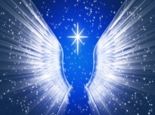 angelwings